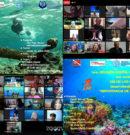 FMAS México promueve conservación de océanos y patrimonio subacuático con reuniones digitales de Buceo Infantil